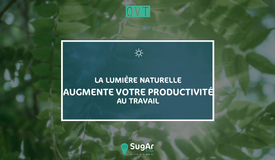 QVT: Natural light increases your productivity at work